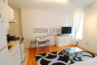 Rental furnished Upper East Side - Roosvelt Island