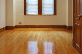 Appartement vide 1 chambre New York City