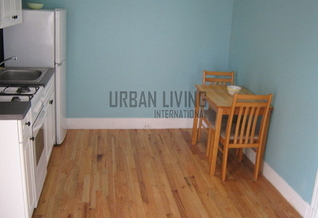 Brooklyn 1 bedroom Townhouse